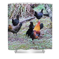 The Cock-walk Shower Curtain