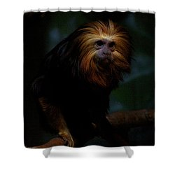 The Coif Shower Curtain