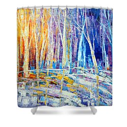 The Color Of Snow Shower Curtain by Tatiana Iliina