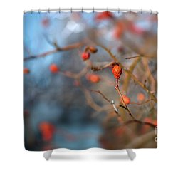 The Color Of Winter Shower Curtain