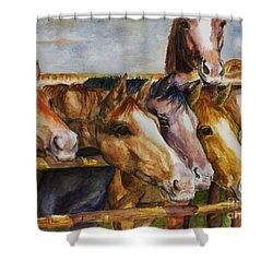 The Colorado Horse Rescue Shower Curtain