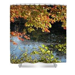 The Colors Of Fall Shower Curtain by Tara Lynn