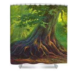 The Colors Of Light Shower Curtain
