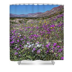 Shower Curtain featuring the photograph The Colors Of Spring Super Bloom 2017 by Peter Tellone