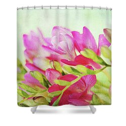 Shower Curtain featuring the photograph Colour Full Freesia by Connie Handscomb