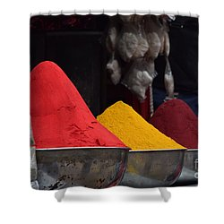 The Colours Of Holi Shower Curtain by Mini Arora