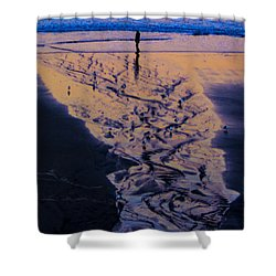 The Comming Day Shower Curtain by Dale Stillman