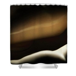 The Conch's Secrect Place Shower Curtain