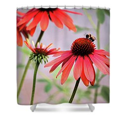 The Coneflower Collection Shower Curtain