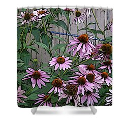 The Coneflowers Shower Curtain