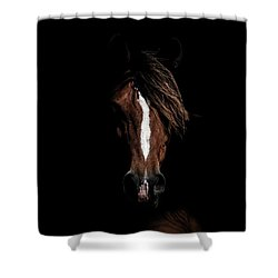 The Connection Shower Curtain
