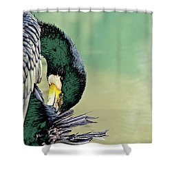 The Cormorant Shower Curtain