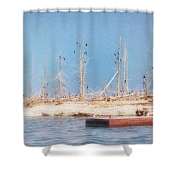 Shower Curtain featuring the photograph The Cormorants At Deaths Door by Susan Rissi Tregoning