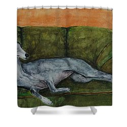 The Couch Potatoe Shower Curtain by Frances Marino