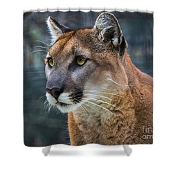 The Cougar Shower Curtain