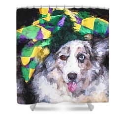 Shower Curtain featuring the photograph The Court Jester by Cathy Donohoue