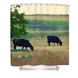 The Cows Next Door Shower Curtain
