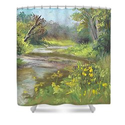 The Creek At 1302 Shower Curtain by Terri  Meyer