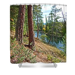 The Creek Shower Curtain by Nancy Harrison