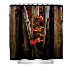 Shower Curtain featuring the photograph The Crimson Forest by Jessica Jenney