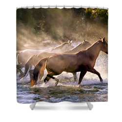 The Crossing Shower Curtain by Janet Fikar