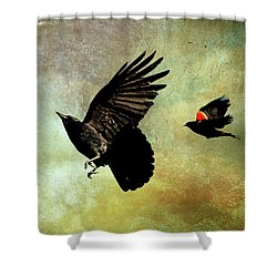 The Crow And The Blackbird Shower Curtain by Peggy Collins