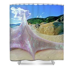 Shower Curtain featuring the sculpture The Crystalline Rainbow Shell Sculpture by Shawn Dall