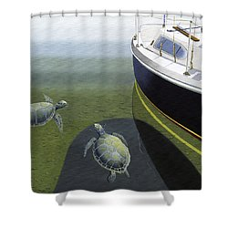 The Curiosity Of Sea Turtles Shower Curtain