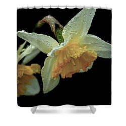 The Daffodil Shower Curtain