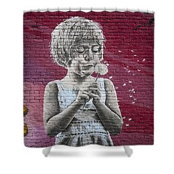 The Dandelion Shower Curtain by Chris Dutton