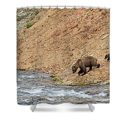 The Danger Has Passed Shower Curtain