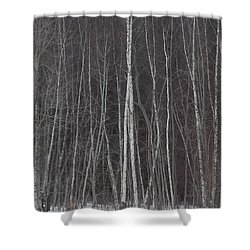 The Dark Beyond The Trees Shower Curtain