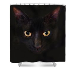 The Dark Cat Shower Curtain by Gina Dsgn