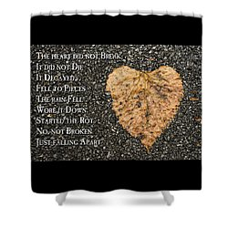 The Decay Of Heart Shower Curtain