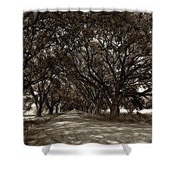 The Deep South Bw Shower Curtain by Steve Harrington