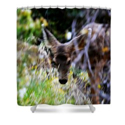 The Deer Shower Curtain