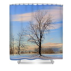 The Delight Shower Curtain by Elfriede Fulda