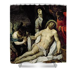 The Deposition Shower Curtain by Pieter van Mol