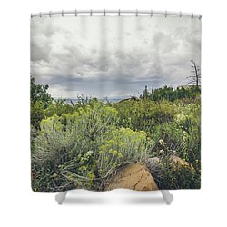 The Desert Comes Alive Shower Curtain