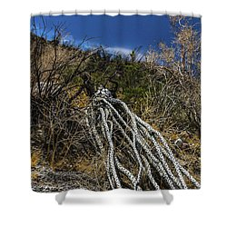 The Desert Sentinel Shower Curtain