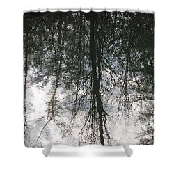 The Devic Pool 1 Shower Curtain