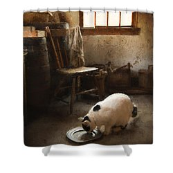 Shower Curtain featuring the photograph The Dishwasher by Robin-Lee Vieira