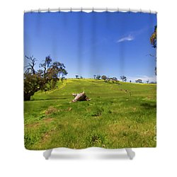 Shower Curtain featuring the photograph The Distant Hill by Douglas Barnard