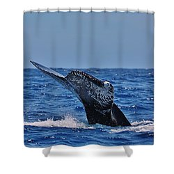 The Dive Shower Curtain by Sheila Ping