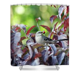 The Dogwood Diner Shower Curtain by Trina Ansel