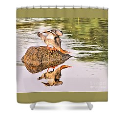 The Duck Ducks Shower Curtain