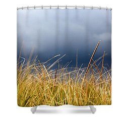 Shower Curtain featuring the photograph The Tall Grass Waves In The Wind by Dana DiPasquale