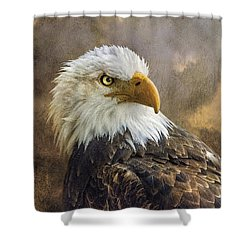 The Eagle's Stare Shower Curtain by Brian Tarr