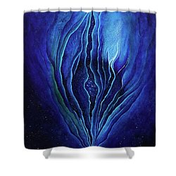 The Ecstatic Birth Of Cosmic Flow Shower Curtain