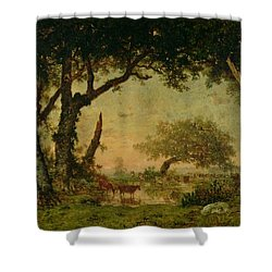 The Edge Of The Forest At Fontainebleau Shower Curtain by Theodore Rousseau